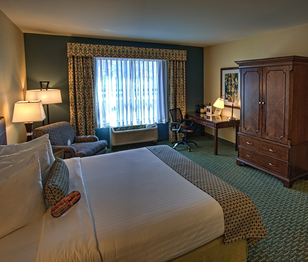 Deluxe King Suite Room